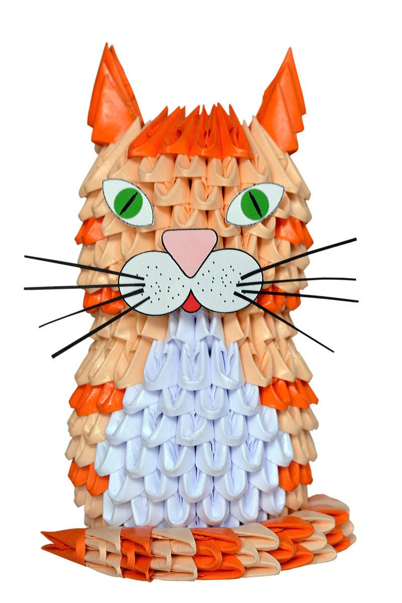 AN 210 Cat