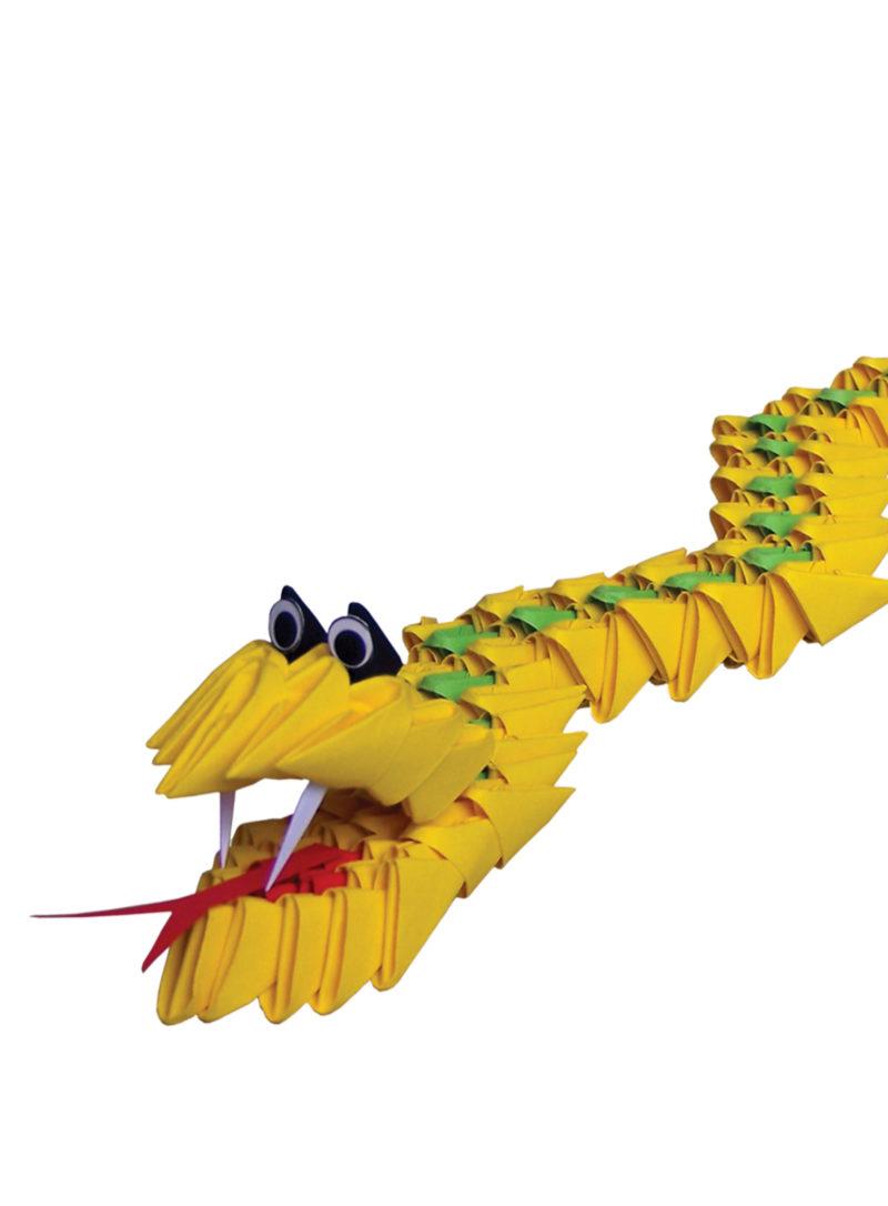AN 095 Snake